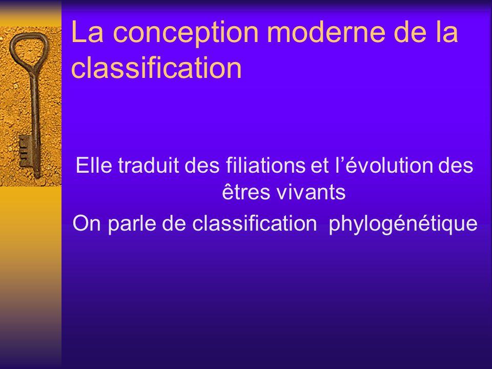 La conception moderne de la classification Elle traduit des filiations et lévolution des êtres vivants On parle de classification phylogénétique