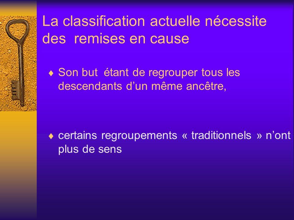 La classification actuelle nécessite des remises en cause Son but étant de regrouper tous les descendants dun même ancêtre, certains regroupements « t