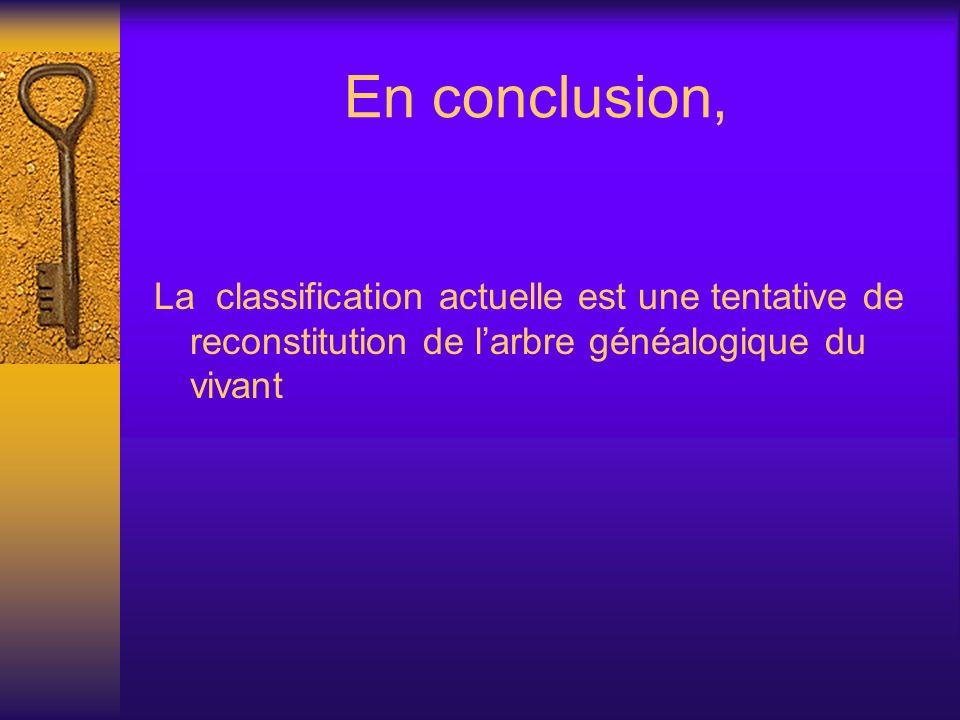 En conclusion, La classification actuelle est une tentative de reconstitution de larbre généalogique du vivant
