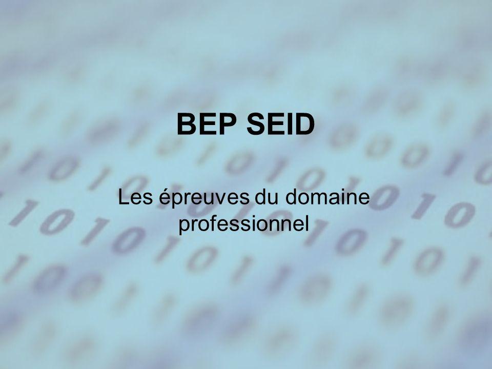 BEP SEID Les épreuves du domaine professionnel