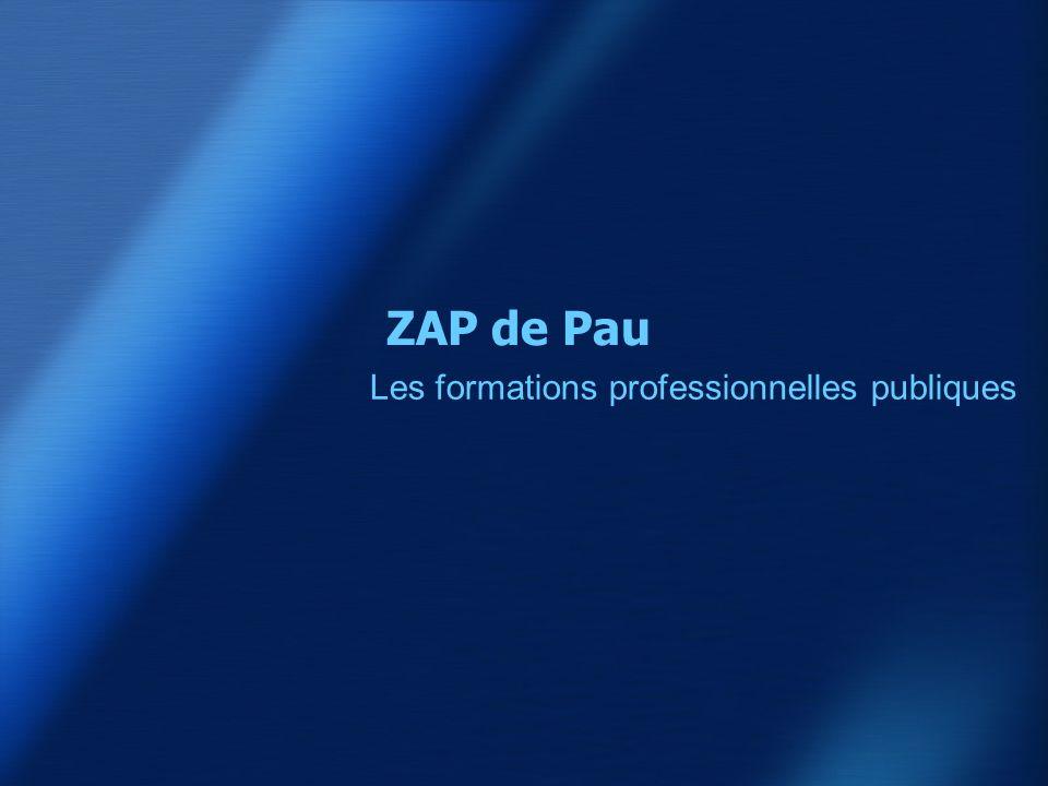 ZAP de Pau Les formations professionnelles publiques