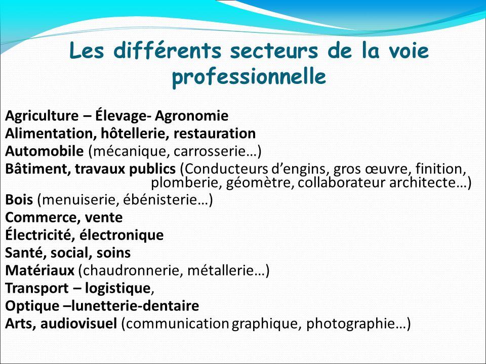 Les différents secteurs de la voie professionnelle Agriculture – Élevage- Agronomie Alimentation, hôtellerie, restauration Automobile (mécanique, carr