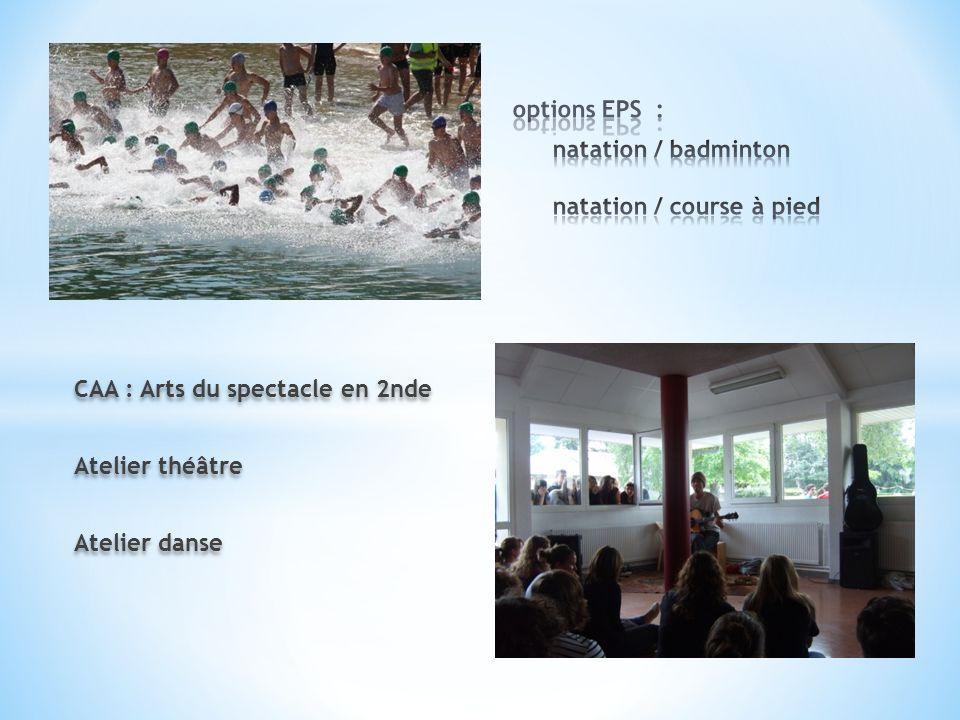 CAA : Arts du spectacle en 2nde Atelier théâtre Atelier danse CAA : Arts du spectacle en 2nde Atelier théâtre Atelier danse