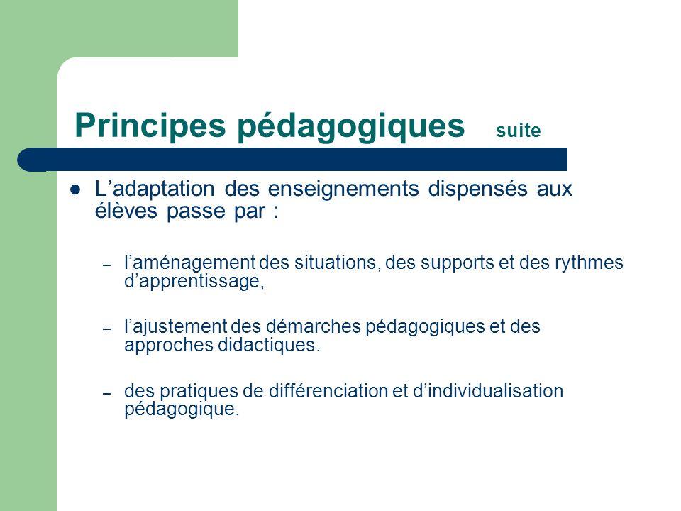 Ladaptation des enseignements dispensés aux élèves passe par : – laménagement des situations, des supports et des rythmes dapprentissage, – lajustemen