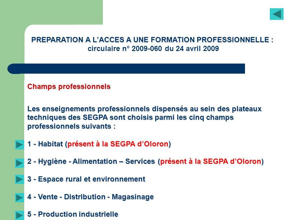 Champs professionnels Les enseignements professionnels dispensés au sein des plateaux techniques des SEGPA sont choisis parmi les cinq champs professi