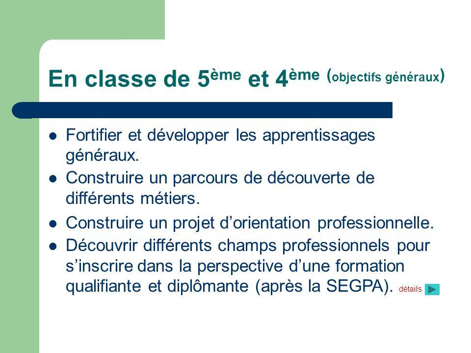 En classe de 3 ème (objectifs généraux) Acquérir dans les domaines généraux et professionnels, des compétences permettant à lélève daccéder à une formation diplomate de s insérer professionnellement et socialement.