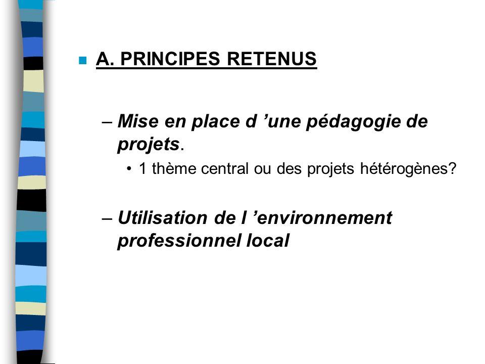 n A.PRINCIPES RETENUS –Mise en place d une pédagogie de projets.