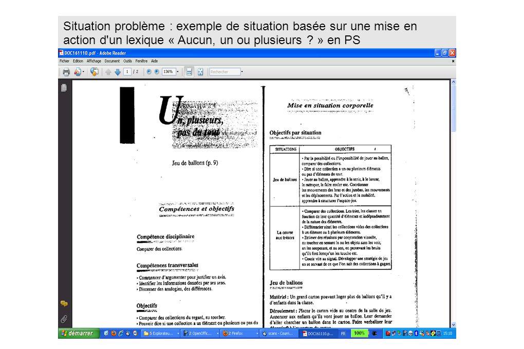 Situation problème : exemple de situation basée sur une mise en action d'un lexique « Aucun, un ou plusieurs ? » en PS