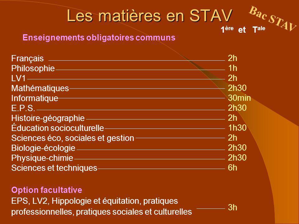 Les matières en STAV Bac STAV 1 ère et T ale Enseignements obligatoires communs Français Philosophie LV1 Mathématiques Informatique E.P.S. Histoire-gé