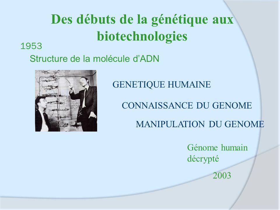 1953 Structure de la molécule dADN GENETIQUE HUMAINE CONNAISSANCE DU GENOME MANIPULATION DU GENOME Génome humain décrypté 2003 Des débuts de la généti