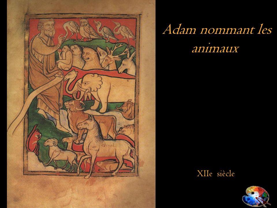 Adam nommant les animaux XIIe siècle