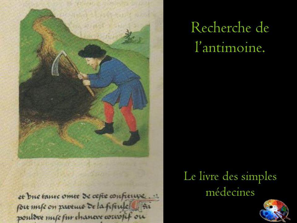 Recherche de lantimoine. Le livre des simples médecines