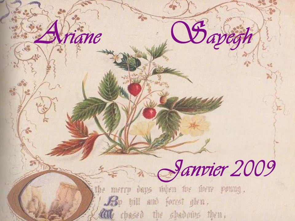 A riane S ayegh Janvier 2009