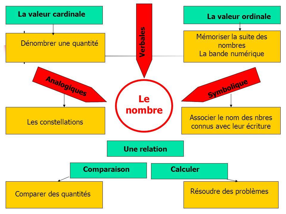 La valeur cardinale Dénombrer une quantité La valeur ordinale Mémoriser la suite des nombres La bande numérique Une relation Analogiques Les constella