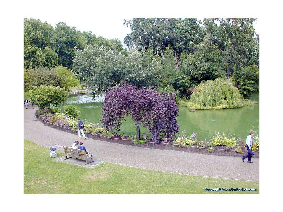 Déjeuner avec le panier repas à St Jamess Park