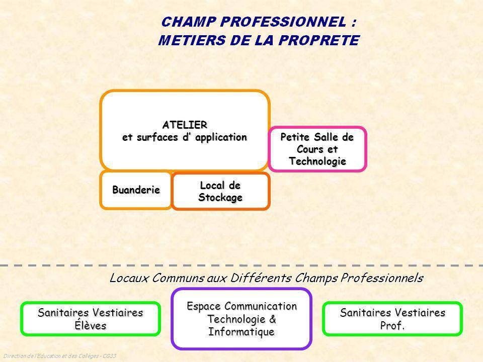 Direction de lEducation et des Collèges - CG33 Serre Locaux Communs aux Différents Champs Professionnels Espace Communication Technologie & Informatiq