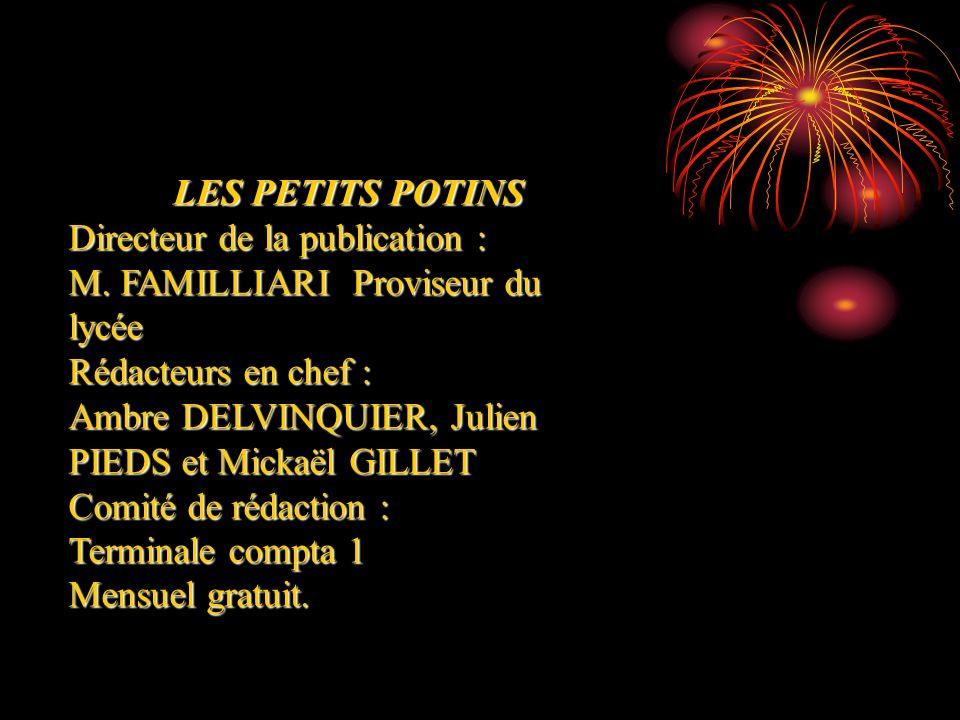 LES PETITS POTINS Directeur de la publication : M. FAMILLIARI Proviseur du lycée Rédacteurs en chef : Ambre DELVINQUIER, Julien PIEDS et Mickaël GILLE