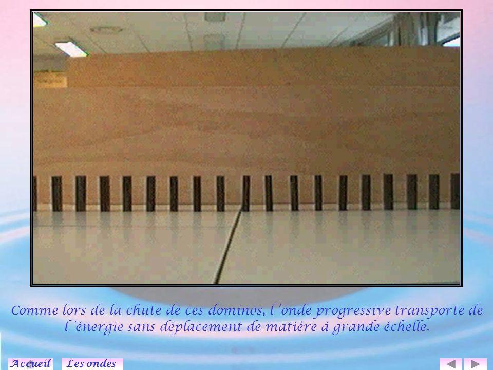 Signal transversal se propageant à la surface de l eau (2 dimensions).