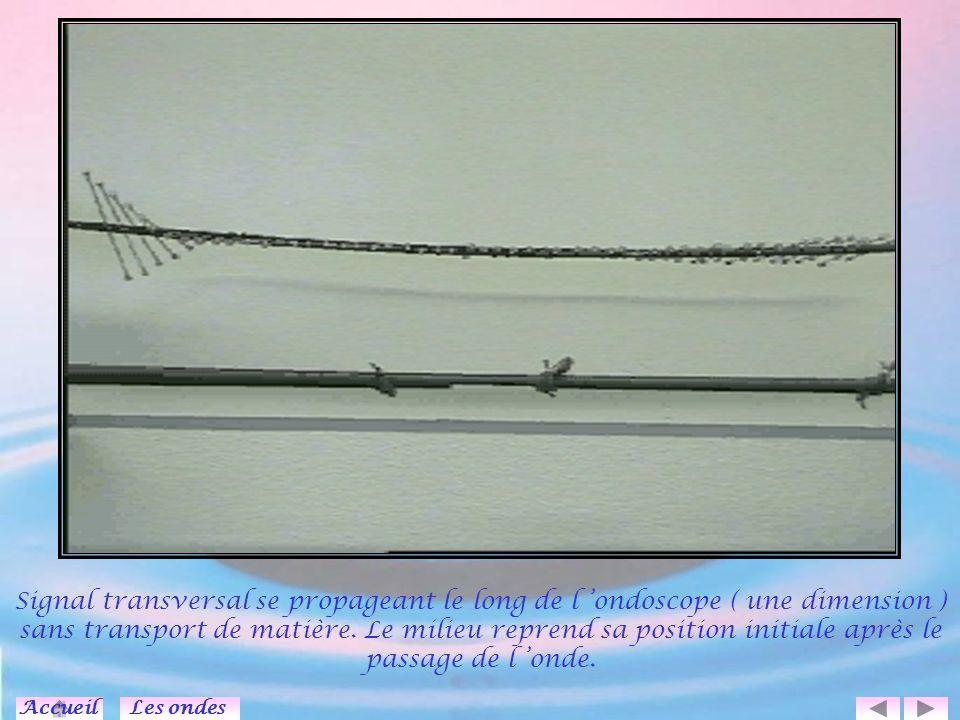 Simulation de propagation d un ébranlement ou d une onde périodique le long d une corde : Influence de la période, de la vitesse, mise en évidence de la longueur d onde.