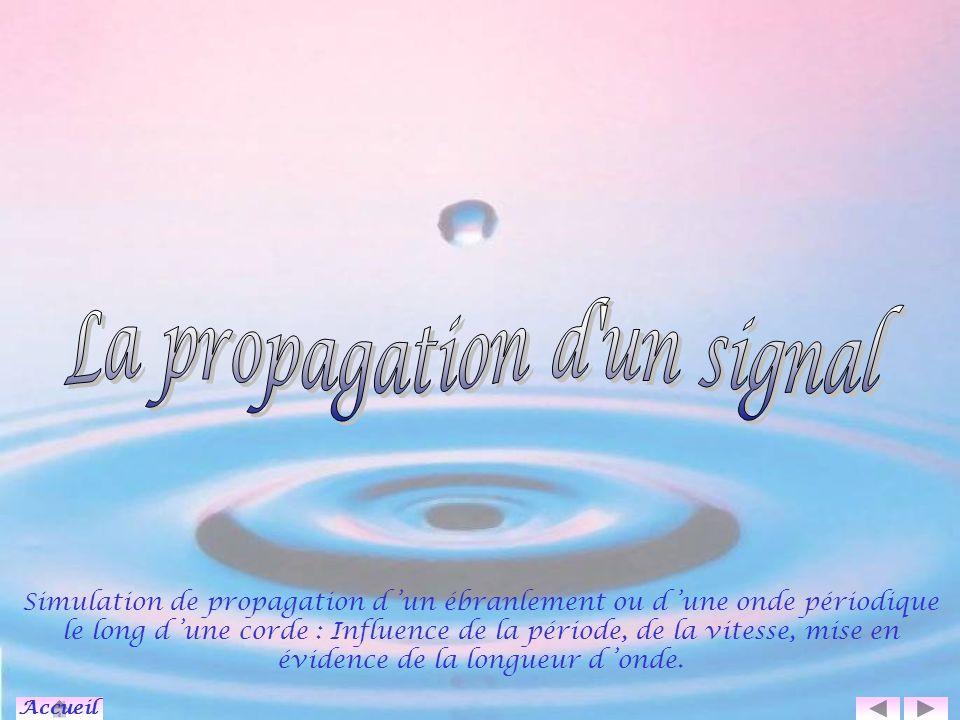 L onde progressive périodique La source S est animée d un mouvement périodique.