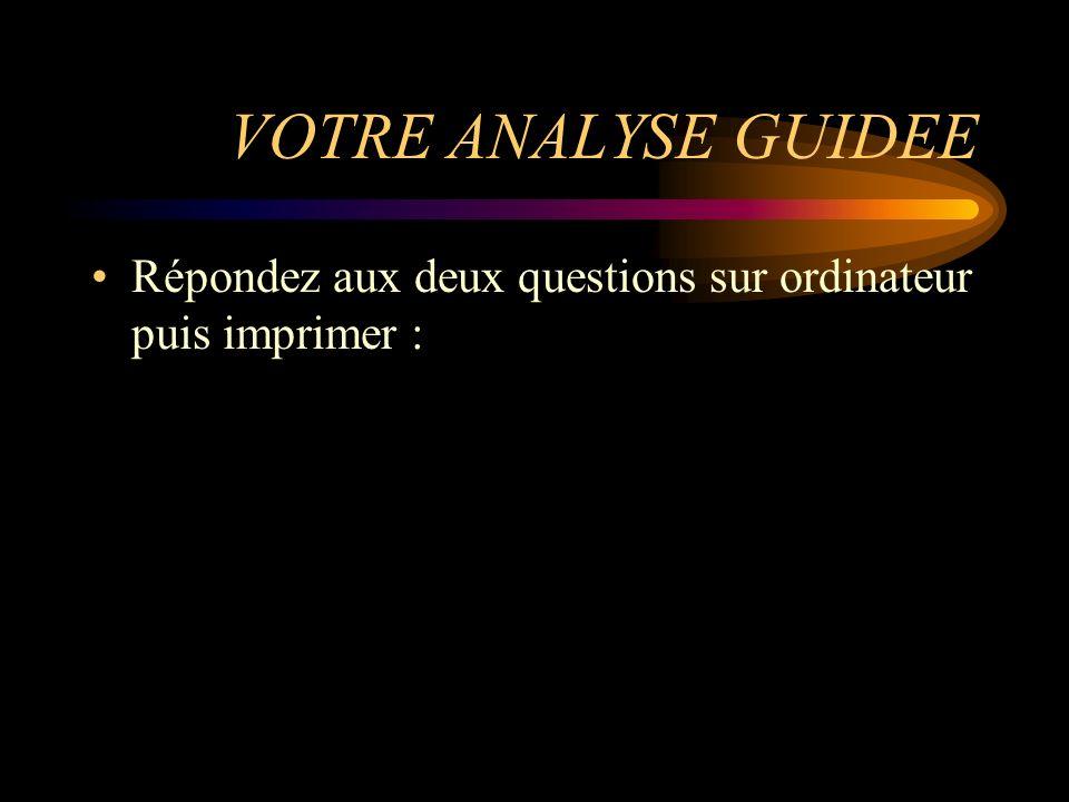VOTRE ANALYSE GUIDEE Répondez aux deux questions sur ordinateur puis imprimer :