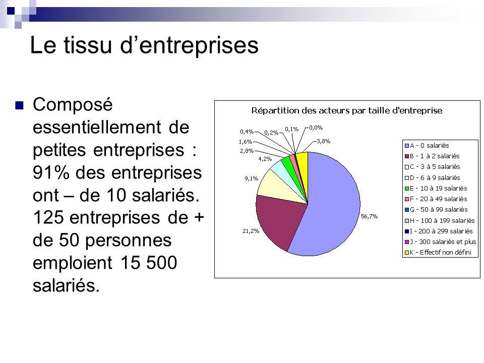 Le tissu dentreprises Composé essentiellement de petites entreprises : 91% des entreprises ont – de 10 salariés.