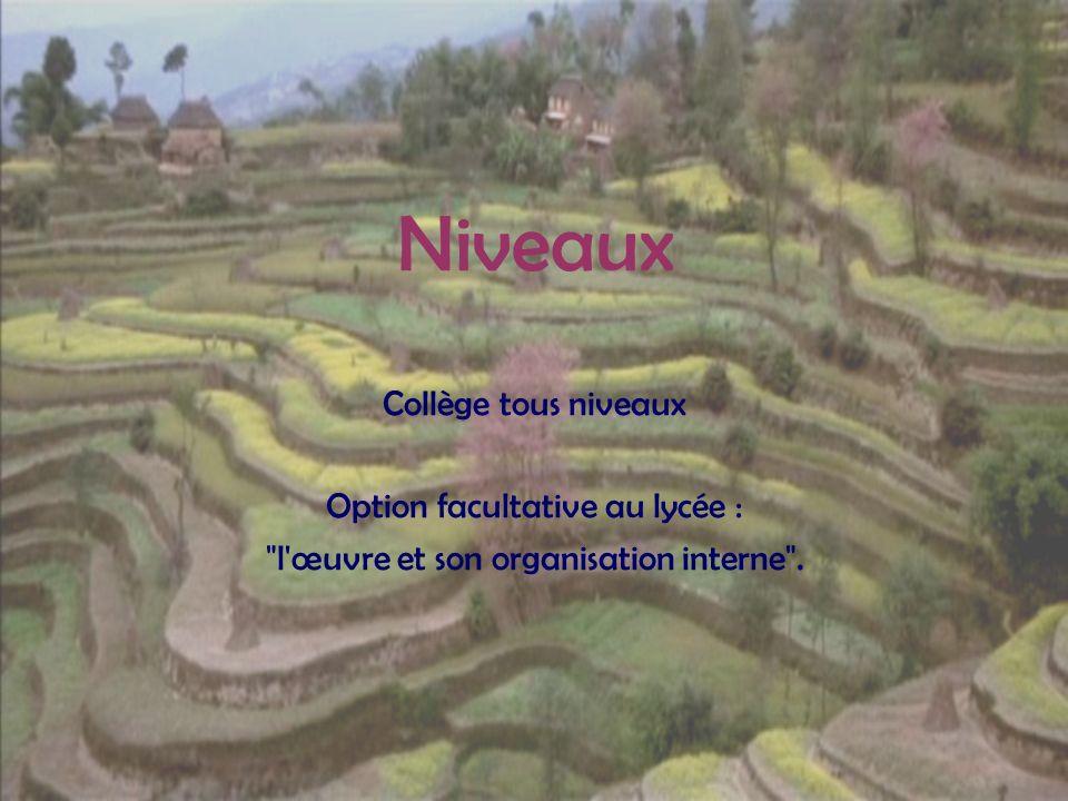 Niveaux Collège tous niveaux Option facultative au lycée : l œuvre et son organisation interne .