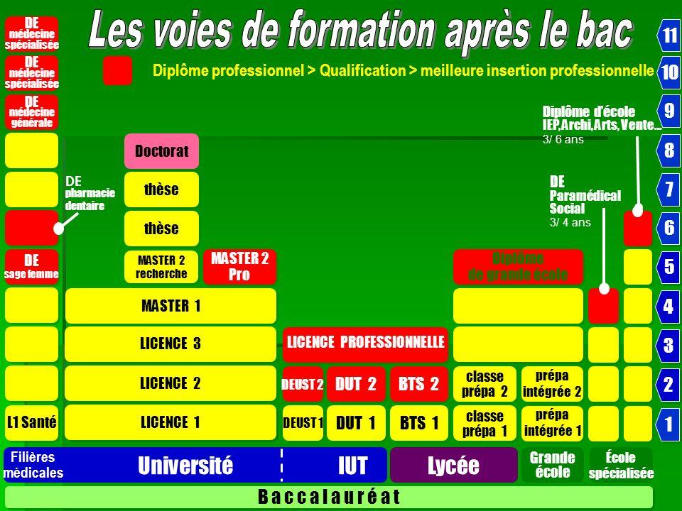 Nouveaux Bacheliers 2008 Après le Bac L UNIVERSITÉ 66,8 C.P.G.E.