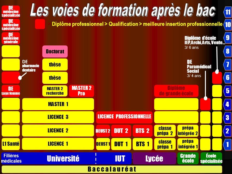 Nouveaux Bacheliers 2008 UNIVERSITÉ 51,3 C.P.G.E I.U.T.