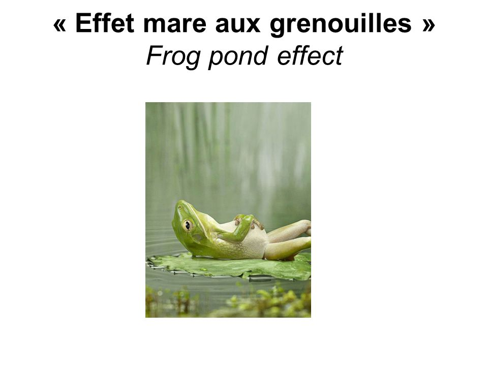 « Effet mare aux grenouilles » Frog pond effect