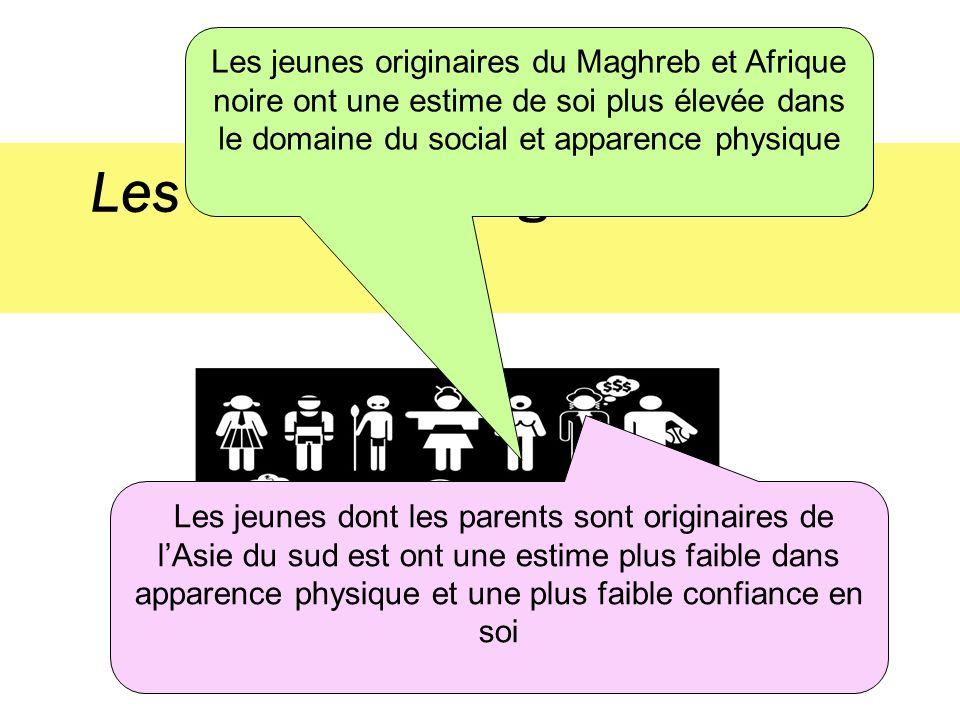 Les effets de lorigine culturelle Les jeunes originaires du Maghreb et Afrique noire ont une estime de soi plus élevée dans le domaine du social et ap
