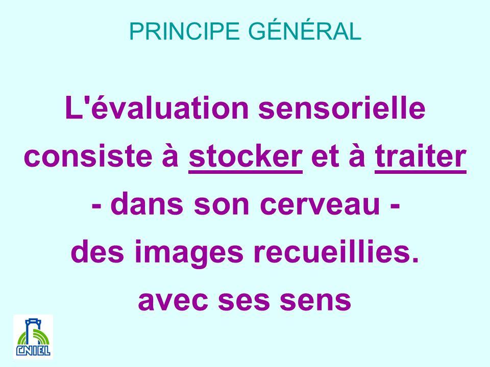 PRINCIPE GÉNÉRAL L'évaluation sensorielle consiste à stocker et à traiter - dans son cerveau - des images recueillies. avec ses sens