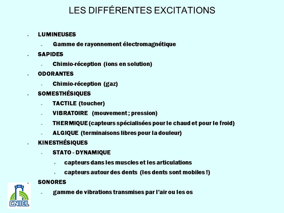 LES DIFFÉRENTES EXCITATIONS LUMINEUSES – Gamme de rayonnement électromagnétique SAPIDES – Chimio-réception (ions en solution) ODORANTES – Chimio-récep