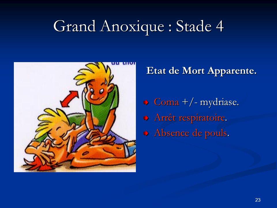 23 Grand Anoxique : Stade 4 Etat de Mort Apparente. Coma +/- mydriase. Arrêt respiratoire. Absence de pouls.