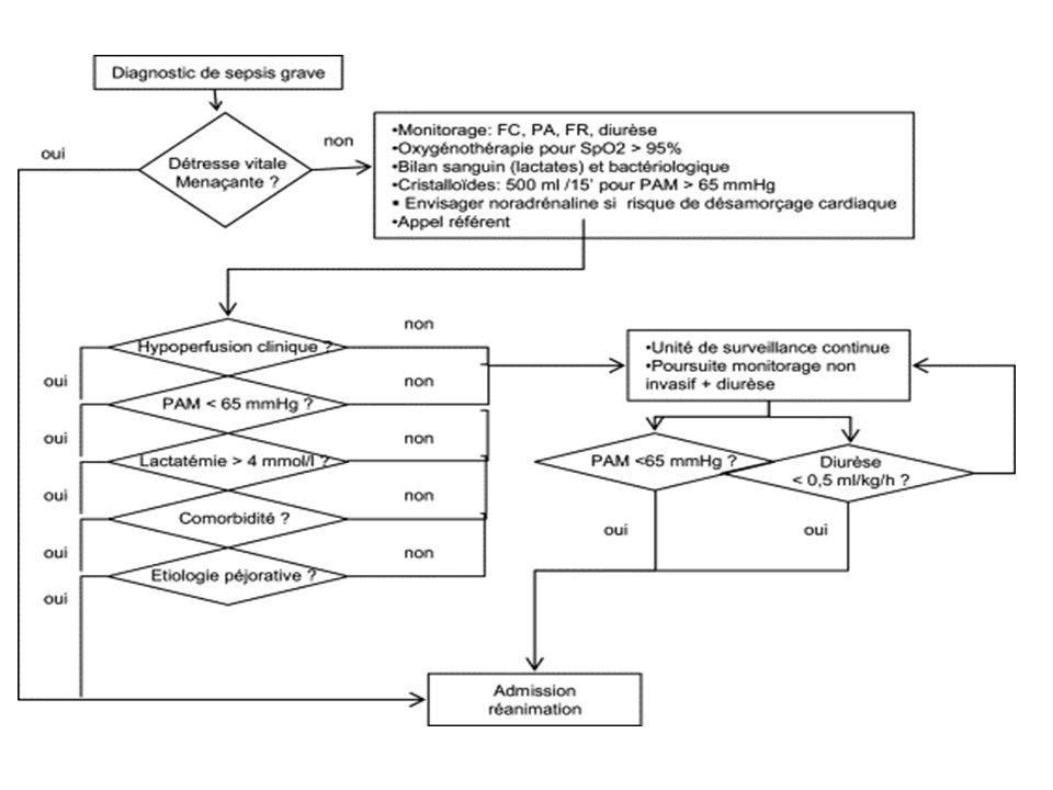 Prise en charge optimale du choc septique surviving sepsis campaign Dans les 6 premières heures 1.Prélévements, paramétrages Hémocultures,lactates,diurèse 2.Expansion volémique Cristalloides: séquences de 500ml/15min 20-40 ml/kg Transfusions si Hb < 7g/dl, SvcO2<70% 3.Traitement vasoactif et inotrope + Noradrénaline: 20-40 ml/kg Dobutamine: si insuffisance cardiaque connue, SvcO2<70% 20 µg/kg/min 4.Antibiothérapie Dans les 3 premiéres heures à large spectre