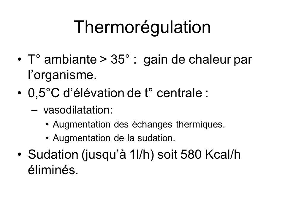 Thermorégulation Evaporation= seul moyen de perdre de la chaleur en ambiance chaude.