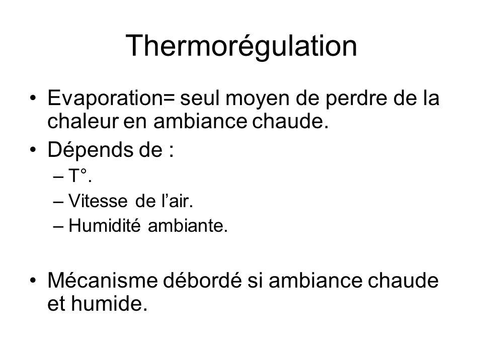 Thermorégulation Evaporation= seul moyen de perdre de la chaleur en ambiance chaude. Dépends de : –T°. –Vitesse de lair. –Humidité ambiante. Mécanisme