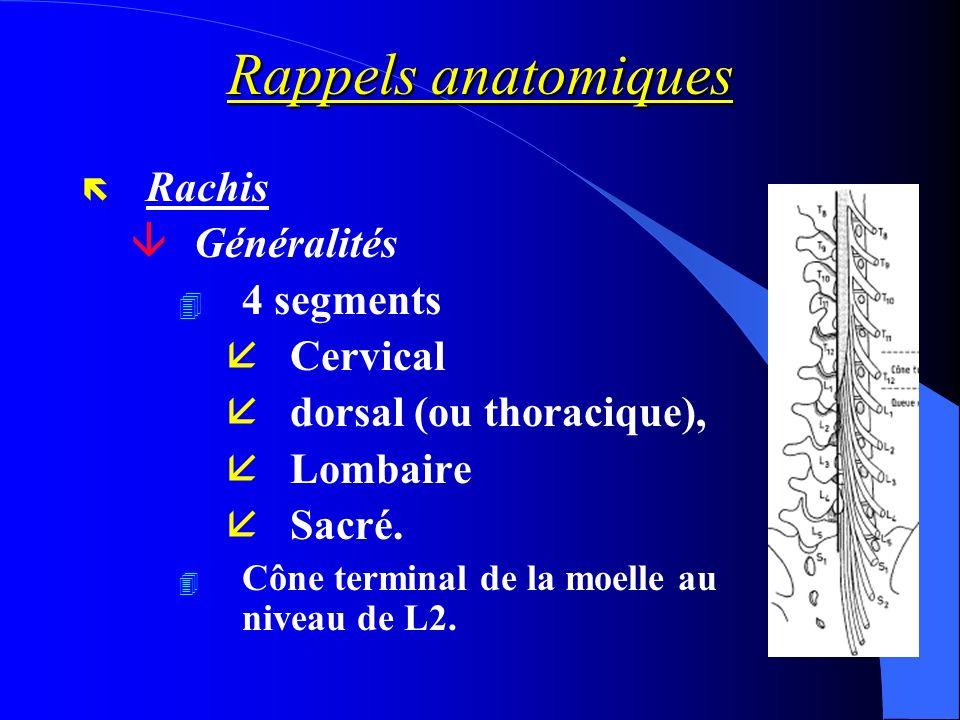 Rappels anatomiques ë Rachis âGénéralités 4 4 segments åCervical ådorsal (ou thoracique), åLombaire åSacré. 4 Cône terminal de la moelle au niveau de