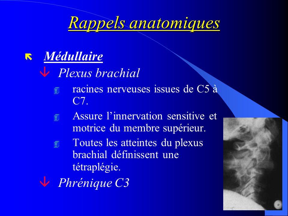 Rappels anatomiques ë Médullaire âPlexus brachial 4 racines nerveuses issues de C5 à C7. 4 Assure linnervation sensitive et motrice du membre supérieu