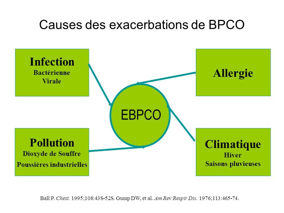 Causes des exacerbations de BPCO Infection Bactérienne Virale Allergie Pollution Dioxyde de Souffre Poussières industrielles Climatique Hiver Saisons