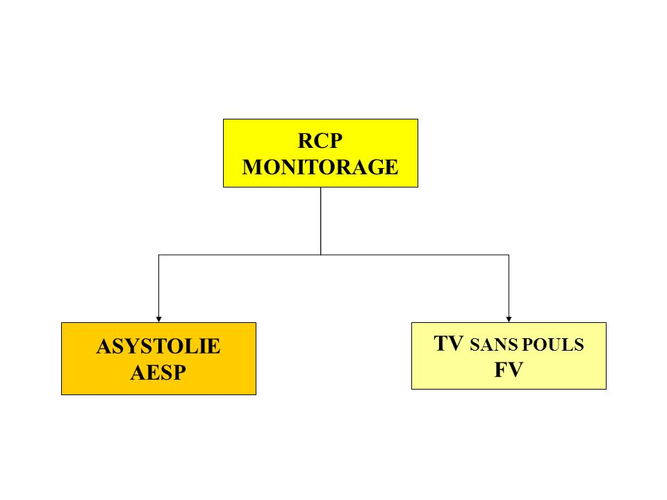 ASYSTOLIE AESP TV SANS POULS FV RCP MONITORAGE