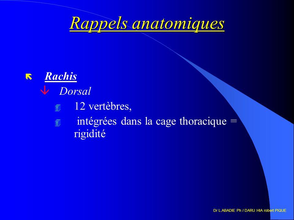 Rappels anatomiques ë Rachis âDorsal 4 12 vertèbres, 4 intégrées dans la cage thoracique = rigidité