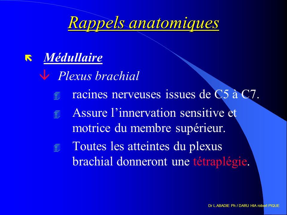 Dr L.ABADIE Ph / DARU HIA robert PIQUE Rappels anatomiques ë Médullaire âPlexus brachial 4 racines nerveuses issues de C5 à C7. 4 Assure linnervation