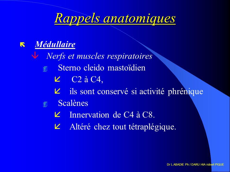 Dr L.ABADIE Ph / DARU HIA robert PIQUE Rappels anatomiques ë Médullaire âNerfs et muscles respiratoires 4 Sterno cleido mastoïdien å C2 à C4, ils sont conservé si activité phrénique 4 Scalènes åInnervation de C4 à C8.
