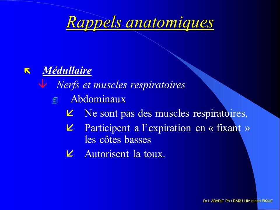 Dr L.ABADIE Ph / DARU HIA robert PIQUE Rappels anatomiques ë Médullaire âNerfs et muscles respiratoires 4 Abdominaux åNe sont pas des muscles respirat