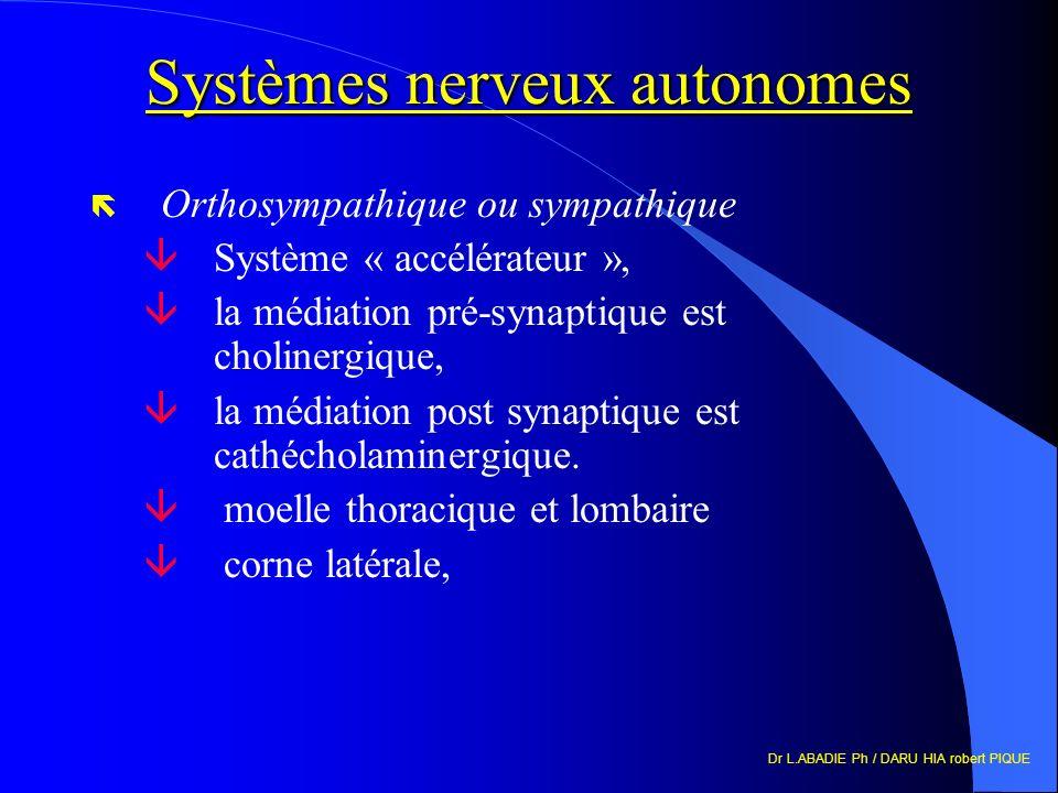 Dr L.ABADIE Ph / DARU HIA robert PIQUE Systèmes nerveux autonomes ë Orthosympathique ou sympathique âSystème « accélérateur », âla médiation pré-synaptique est cholinergique, âla médiation post synaptique est cathécholaminergique.