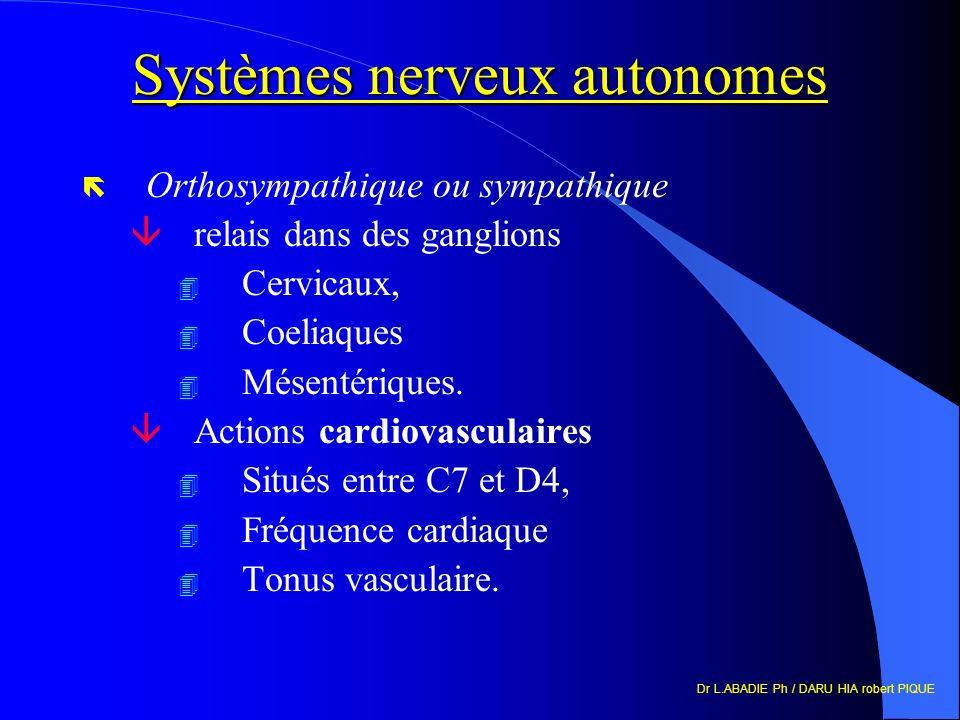 Dr L.ABADIE Ph / DARU HIA robert PIQUE Systèmes nerveux autonomes ë Orthosympathique ou sympathique ârelais dans des ganglions 4 Cervicaux, 4 Coeliaques 4 Mésentériques.
