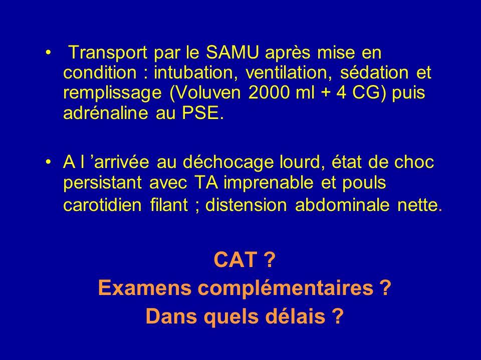 Transport par le SAMU après mise en condition : intubation, ventilation, sédation et remplissage (Voluven 2000 ml + 4 CG) puis adrénaline au PSE.