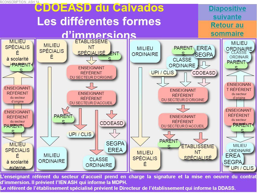 CDOEASD du Calvados Les différentes formes dimmersions MILIEU SPÉCIALIS É MILIEU SPÉCIALIS É MILIEU ORDINAIRE MILIEU ORDINAIRE CLASSE ORDINAIRE CLASSE