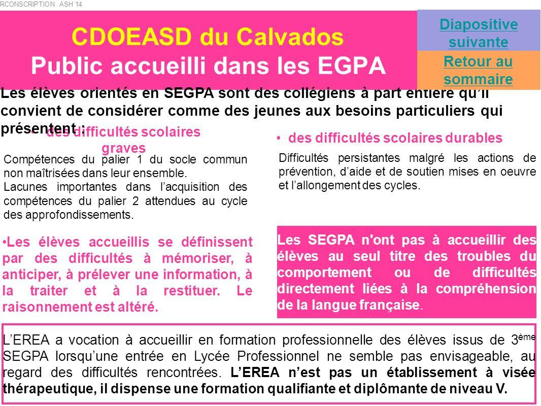 CDOEASD du Calvados Public accueilli dans les EGPA des difficultés scolaires graves des difficultés scolaires durables Compétences du palier 1 du socl